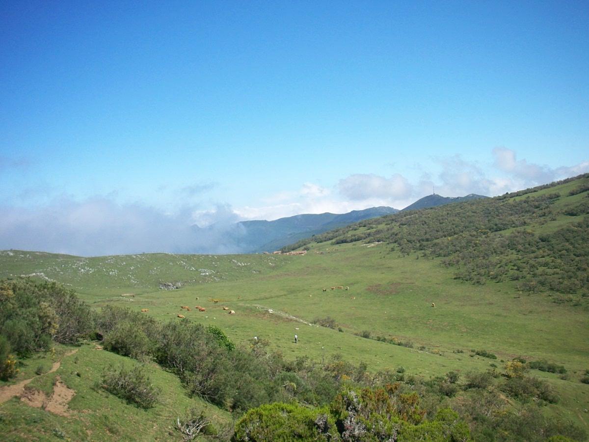 Montes Braña el Chamaraxil